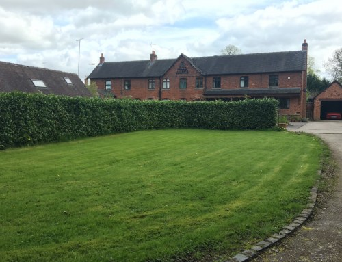 Outline Planning Permission achieved in Foston